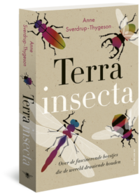 Terra insecta Anne Sverdrup-Thygeson